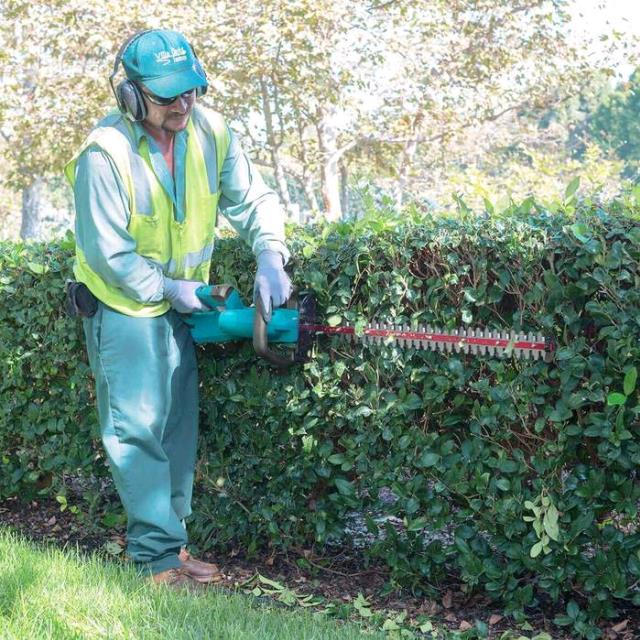 Where to find HEDGE TRIMMER  2 Battery Powered in Omaha