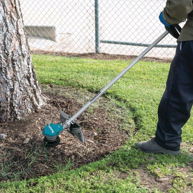 Where to find WEED TRIMMER  2 Battery Powered in Omaha
